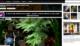 Novo Flickr com 1 TB de armazenamento grátis