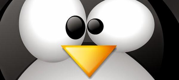 É possível usar Linux sem usar o Terminal?