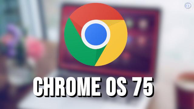Google lança o Chrome OS 75, com novidades para os apps Linux e na segurança do sistema